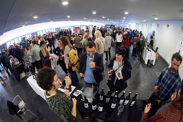 Vinofest Navarra (Pamplona)