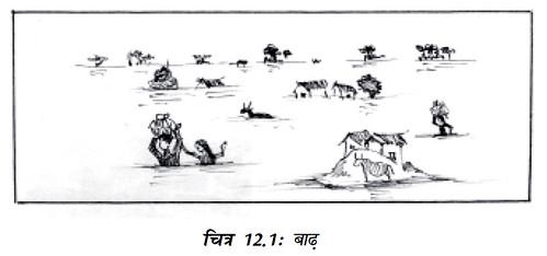 चित्र 12.1 बाढ़