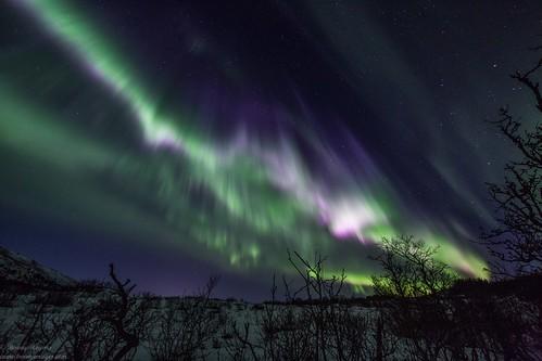 Aurora Magic over Vesterålen, Northern Norway. Photographer Benny Høynes