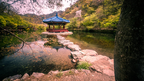 travel path architecture pavillion lake southkorea geotagged nature jeongeup jeollabukdo kr onsale