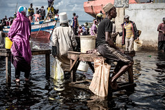 Zanzibar, arrivage de poissons