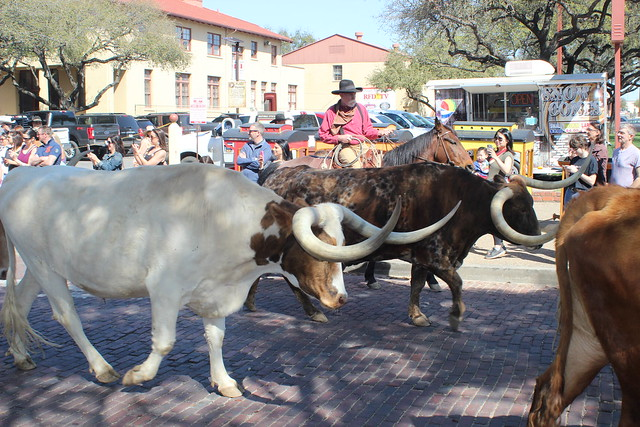 032218 FT Worth Stockyards (75)