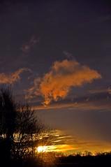 Lumière du coucher de soleil. (2)