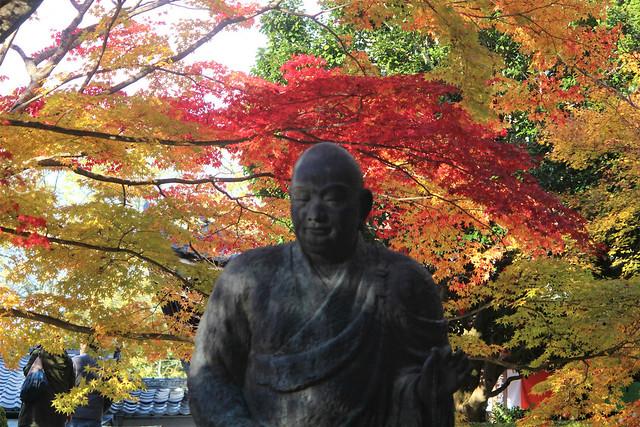 imakumanokannonji-koyo010