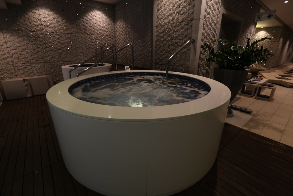Ritz-Carlton Hong Kong Pool and Gym 36
