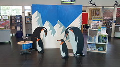 Photos with penguins at South Library