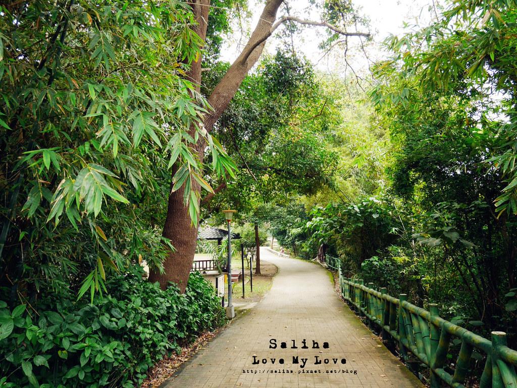 台北士林區天母一日遊行程推薦天母公園 (15)