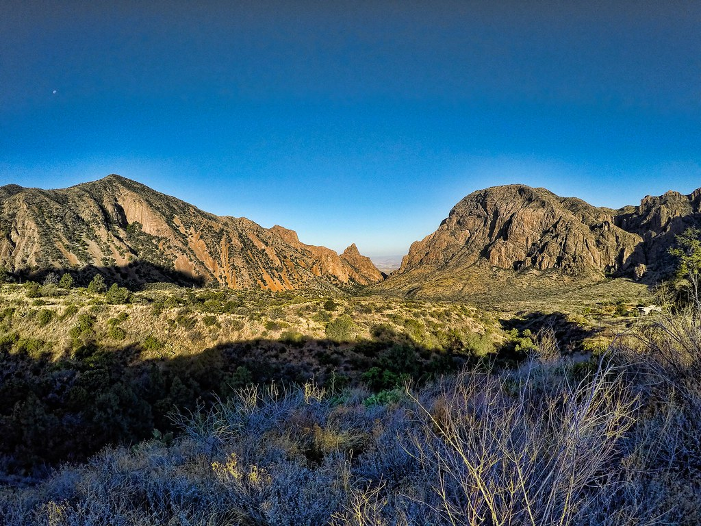 big bend national park black personals Big bend national park opened in 1944 and is home to more than 1,500 species  of plants and various wildlife, including the mexican black.