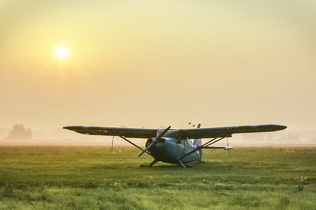 A Plane And Birds Are Out To Pasture - Photo Art