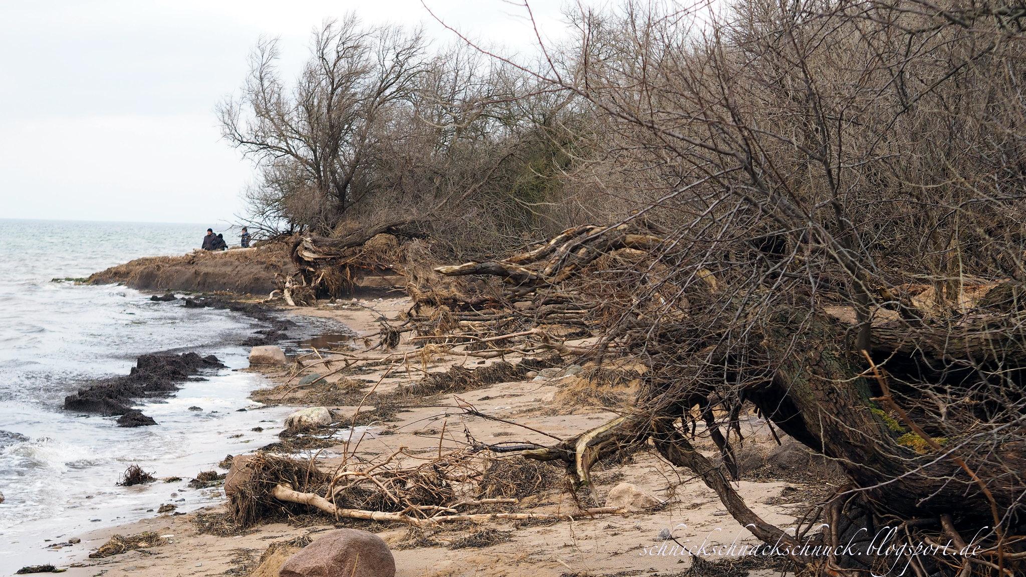 Küstenerosion auf Poel