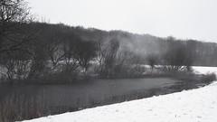 Winterspaziergang - Am Teich auf der Weide; Bergenhusen, Stapelholm (22)