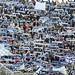 Fiorentina Spal foto di Paolo Giuliani