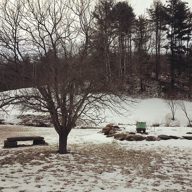 April 20. Dusting of snow overnight. #vermont
