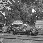 Nighttime Snow Fall Images: B&W
