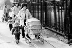 Shuter Street, Toronto, 1980