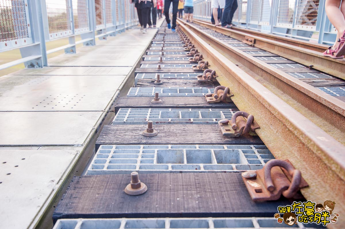 舊鐵橋(屏東端)花海-40