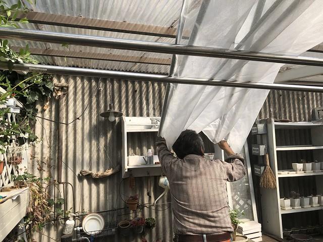 gardenhouse2018-2