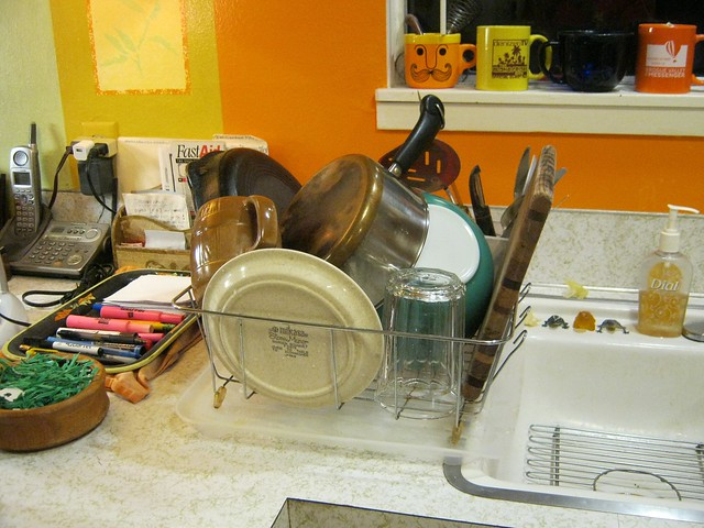 Dishes-2289, Canon POWERSHOT A490