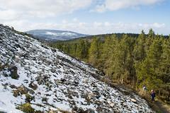 Snowy-ish Barnaslingan hill
