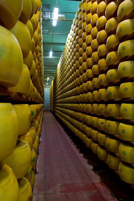 Parmigiano Regano