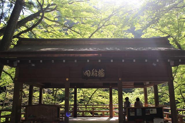 kifune-syaden018