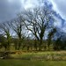 Foulridge Lancashire