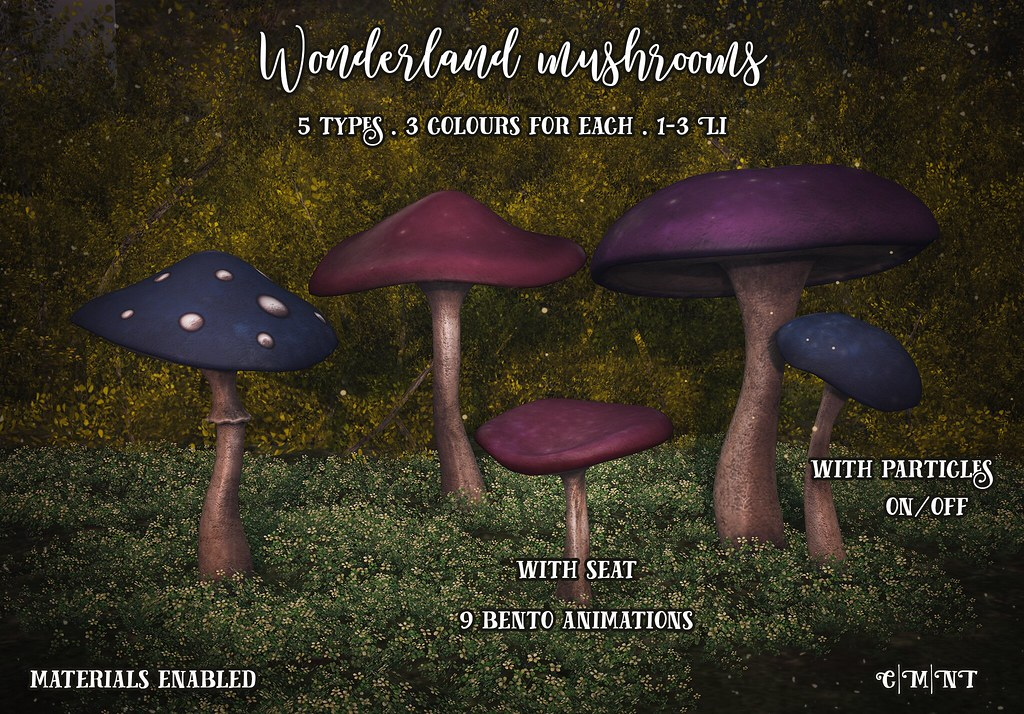Raindale Wonderland mushrooms - TeleportHub.com Live!