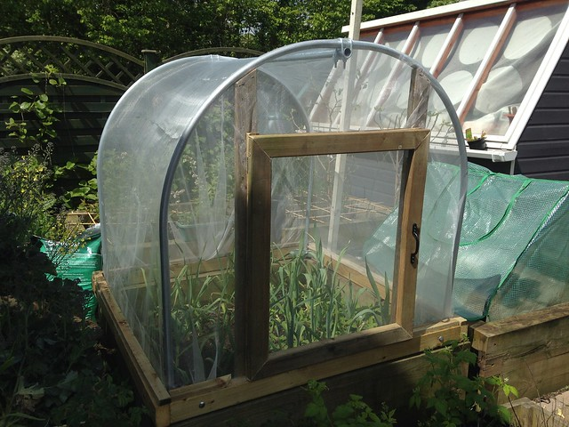 Finished mini polytunnel