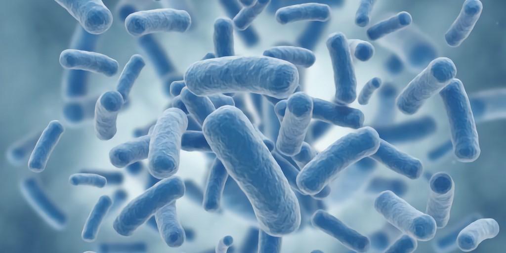 De nouveaux peptides pourraient aider à vaincre les bactéries résistantes aux médicaments