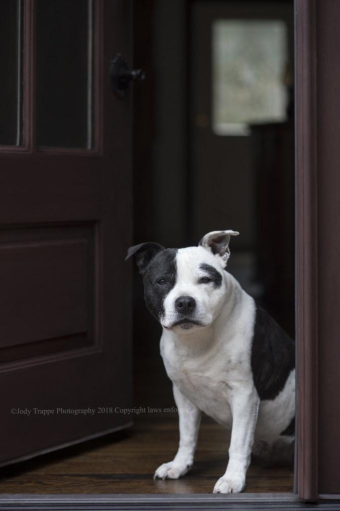He's by the back door