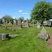 Irvine Old Parish Churchyard (546)