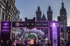 Účast při Night Run Hradec Králové mile překvapila