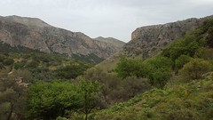 Sirikari Gorge Crete