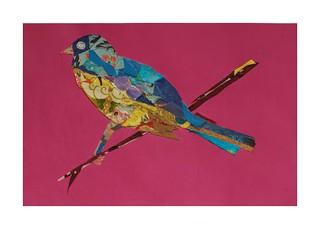 Bird #32