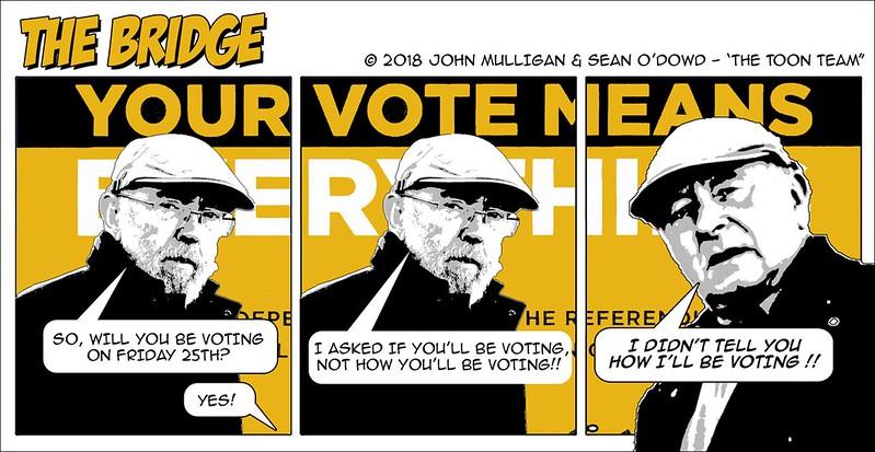 Toon Team - Referendum