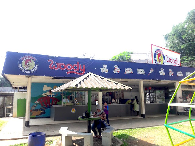 Woody Ice Cream