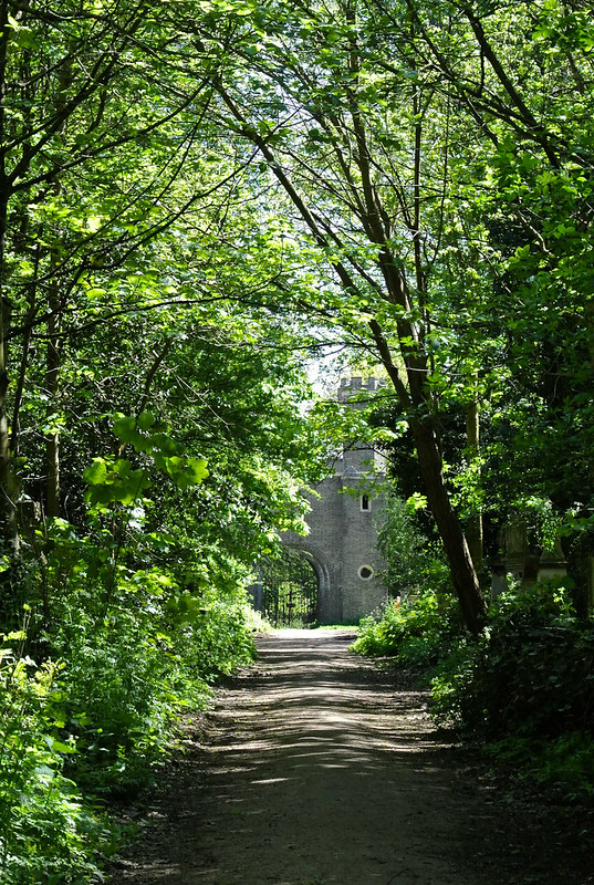 Abney Park Cemetery_2018-29