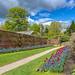 Spring @ Calke Abbey Gardens