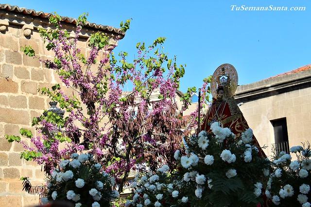 Subida de la Virgen de la Montaña 2ª galería