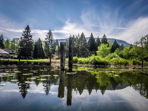 Lake Samish Paddling-70
