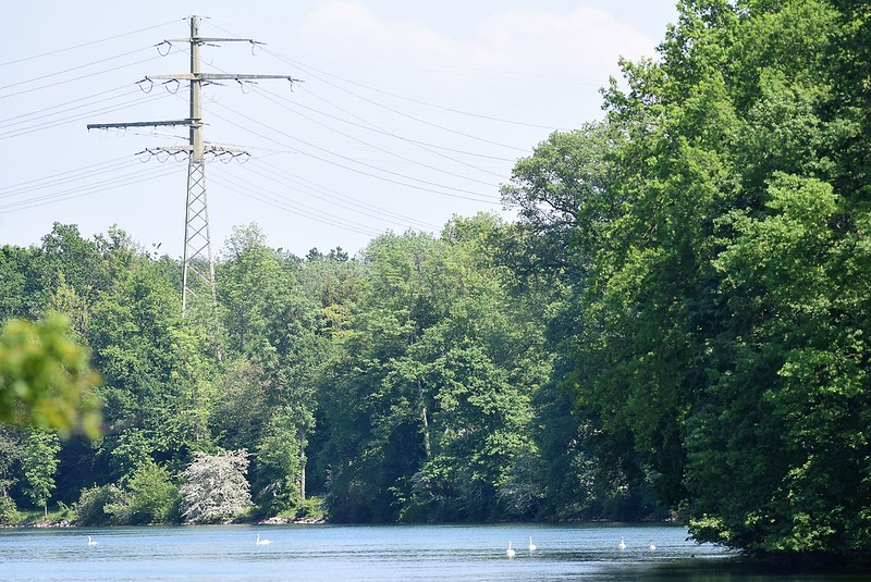River Aare 12.05 (5)