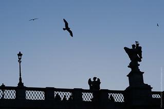 Roma: O Castelo do Anjo