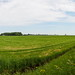 20180521-001 The roads to Duivenvoorde