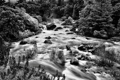 Rapids of the Merced River (Black & White, Yosemite National Park)