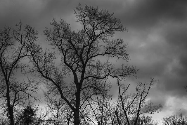 April 25 - The last tendrils of winter
