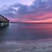The fishing pier at Smyrna Dunes Park. by Jill Bazeley