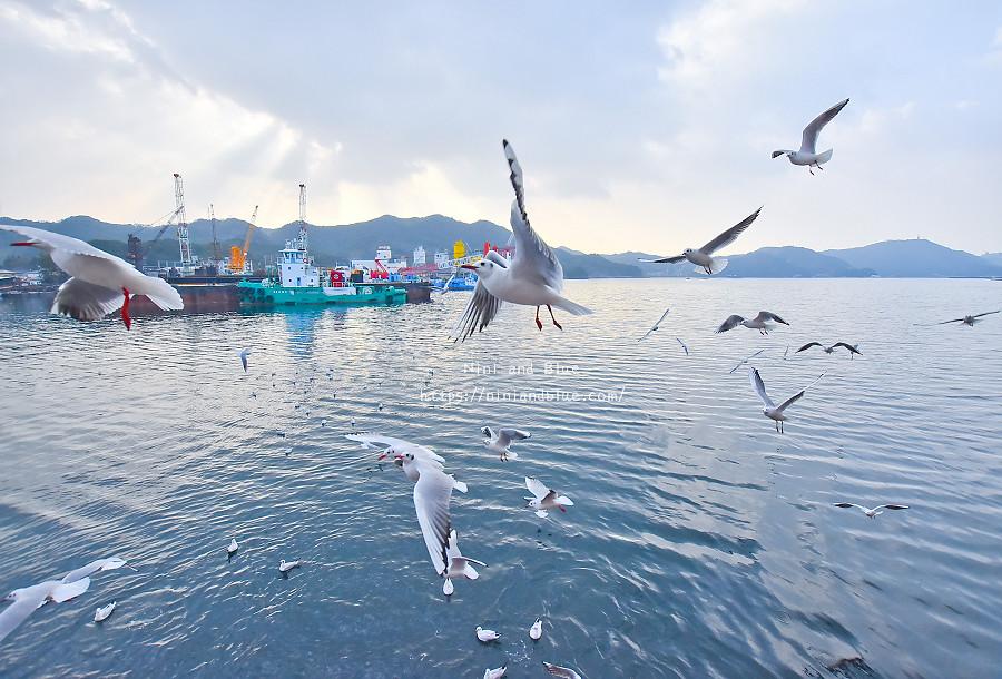 日本 鳴門漩渦 渦潮 淡路島 景點07