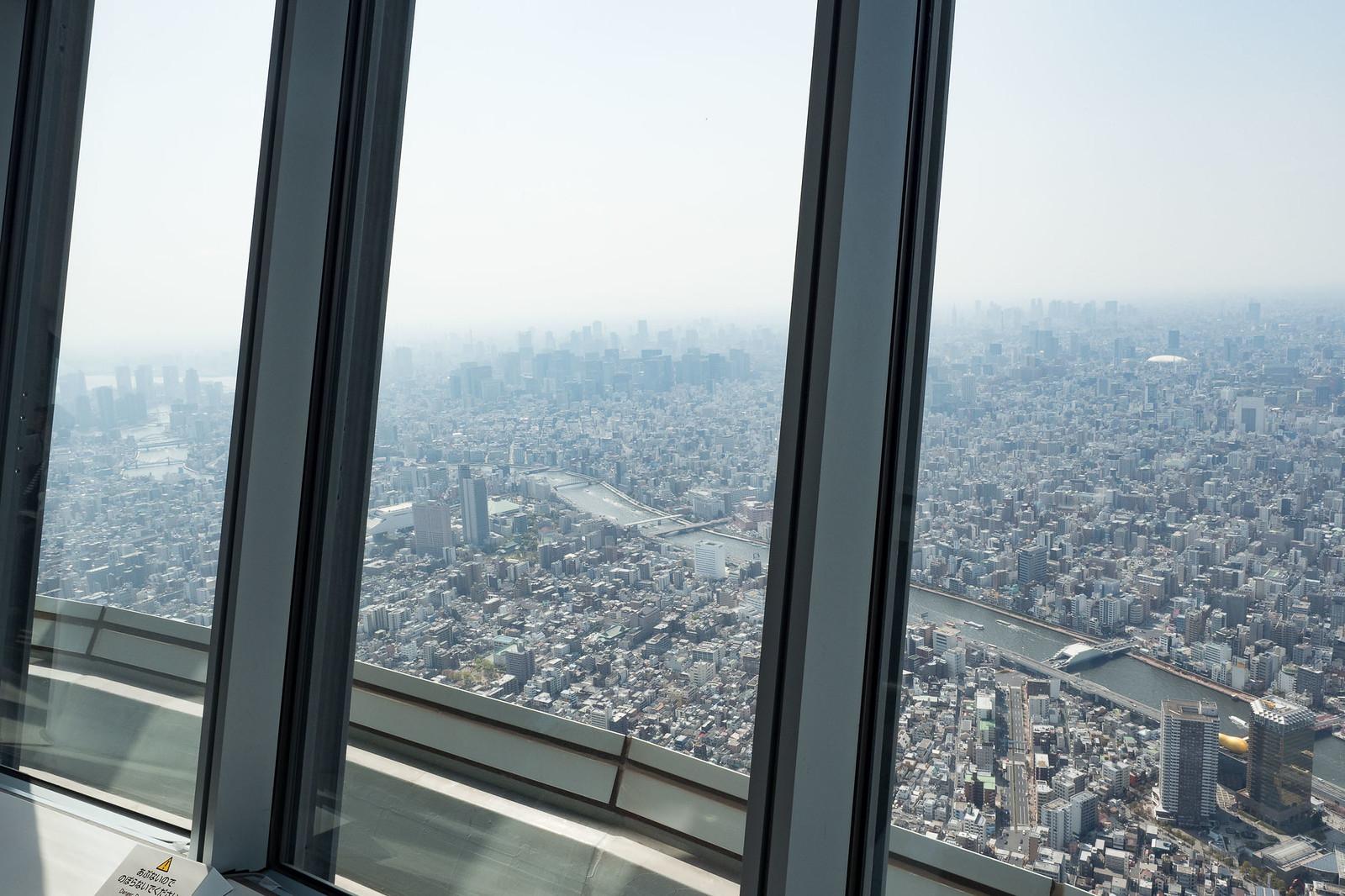 Skytree-19