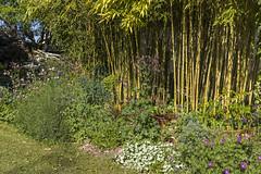 Jardin de Graciane & Didier