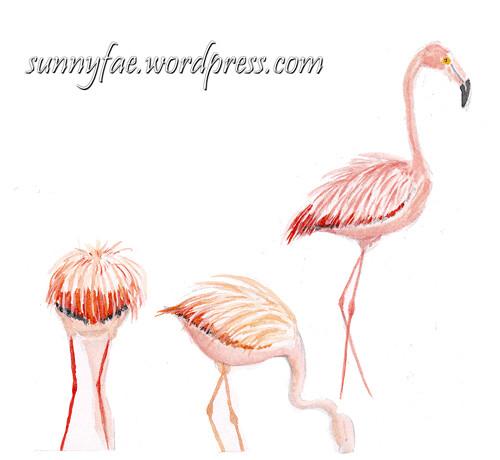 flamingo sketched at the zoo